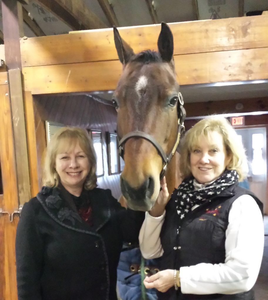 Donna Terry,Interior Designer and Chris Cassenti,owner of Chrislar Farms beside a prized Morgan gelding